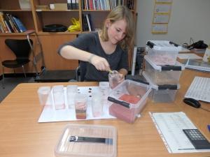 """Vorbereitung für die museumspädagogische Veranstaltung """"Scherbenlabor"""""""