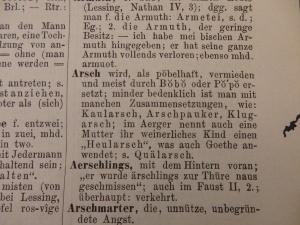 """Eintrag zum Begriff """"Arsch"""""""