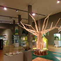 Unser Glücksbaum zur Eröffnung der Ausstellung Anfang November 2017